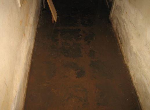 Cirka 1-2 centimeter vanndybde i kjeller i hovedbygg med fuktskader og saltutslag.