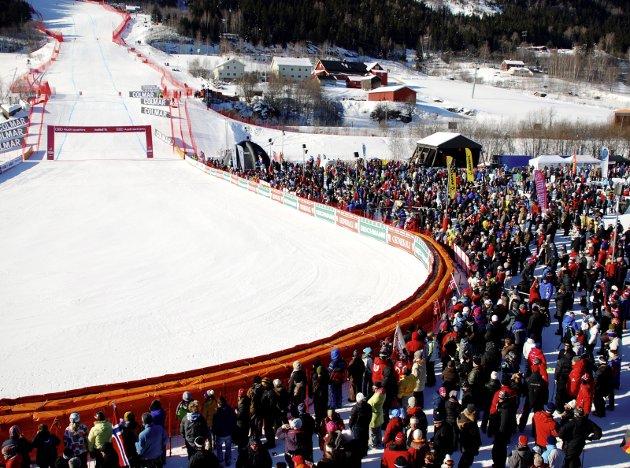 HABILITET: Forbundets ledelse er plassert inn i sine roller for å ivareta skiforbundets interesser.