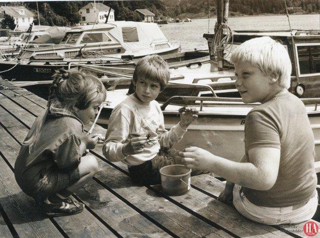 """Publisert: 24. juni 1985 - """"HAs Sommershow"""" først i Sponvika. Startskuddet går i Sponvika, nærmere bestemt på velforeningens brygge. Her blir det mange slags konkurranser og underholdning av variert karakter. Både June, Jon Erik og Tor Henrik Svendsen gleder seg allerede til sommershowet."""