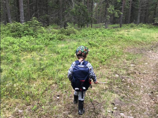 Liten tass i nærskogen.