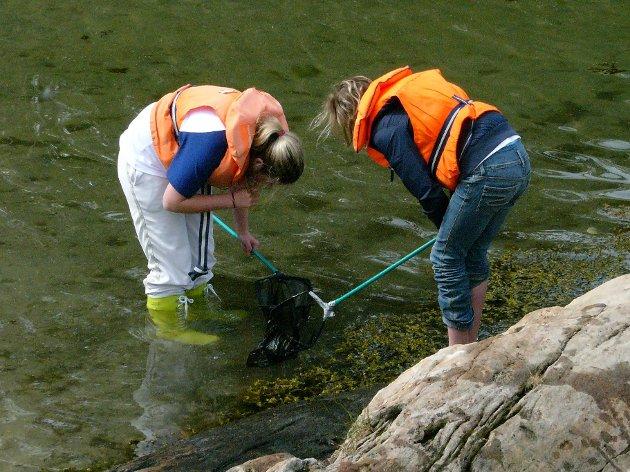Eksempel på målgruppe - skoleelever undersøker natur.