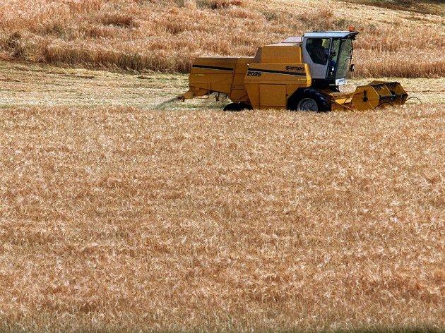 Tapt mangfold: Matproduksjon fører til overforbruk av ferskvann og forurensing av vann og jordsmonn.  80 prosent av tapet av landbasert biologisk mangfold er knyttet til matproduksjon. Foto: ANB