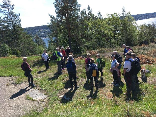Fra turen til Søndre Håøya 2. juni 2019.