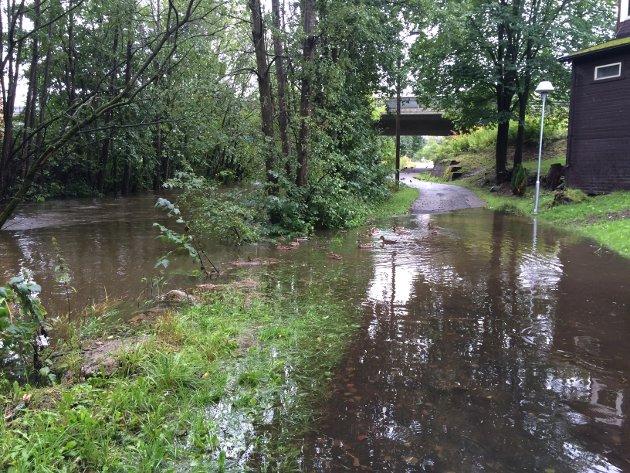 OVERSVØMT: Gangveien langs Askerelva i Asker sentrum ligger delvis under vann.