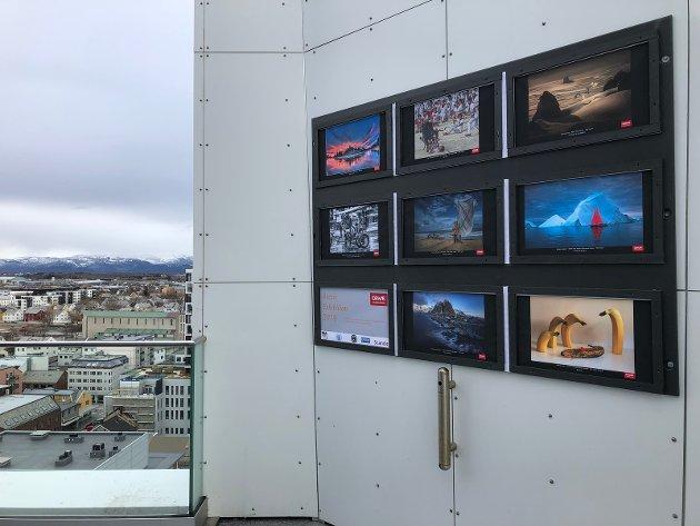Bilde fra utstillingen på takterrassen Scandic Havet