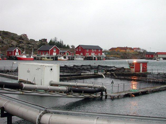 Lovund: Gjennom systematisk og langsiktig satsing har boligmarkedet på Lovund i distriktskommunen Lurøy blitt både variert og attraktiv. Arkivfoto