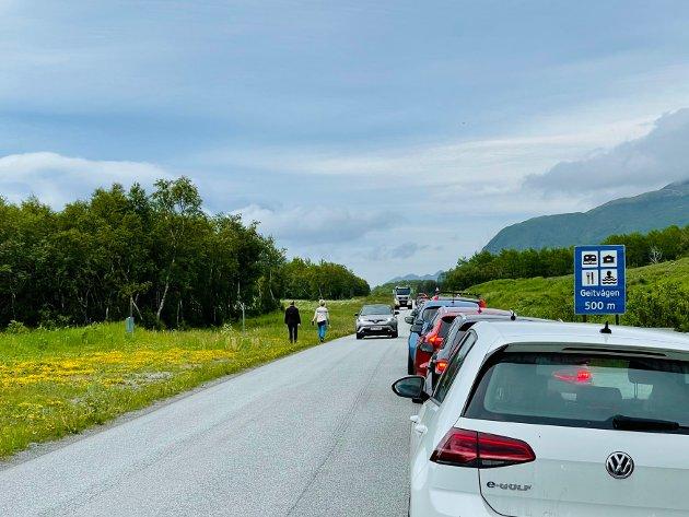 Det dannet seg kø på cirka én kilometer av folk som ville inn til Geitvågen. Her cirka klokken 17:50.