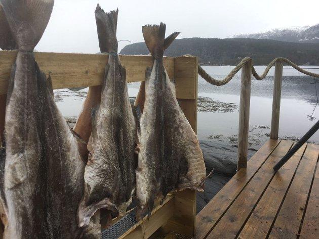 NY TRADISJON? Klippfisk er brukandes til så mangt, og kvifor ikkje gjere det til påskemat i klippfiskens heimland, oppmodar fiskeriministeren.