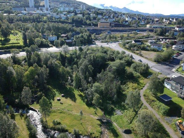 TARALDSVIKJORDET: Det er etter vår vurdering fullt mulig å kunne utvikle denne næringstomten og parken sammen, skriver Frode Kristian Danielsen i Narvikgården.