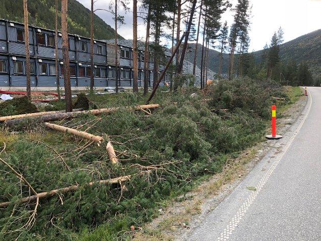 Brudd: Lite er gjort for å sikre fiberkabelen i området der det vart brot i september, skriv Odd Jan Hølmo.Foto: Bjørn Brandt