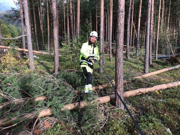 Krise: Kraftig vind veltet trær på vital infrastruktur. Vågå kommune måtte sette i verk kriseplaner.Foto: Bjørn Brandt