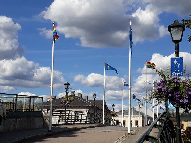 VAKKERT: Da Østfold Pride ble arrangert i Fredrikstad i august, vaiet også regnbueflagget på gangbrua i Halden.