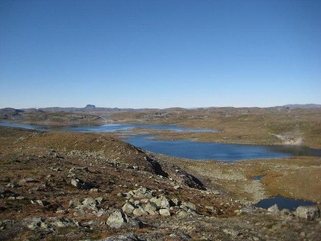 Odda Fjellstyre meiner at det ikkje er behov for eit utvida fjellstyre for Ullensvang Fjellstyre i den nye kommunen, skriv Eivind Tokheim.