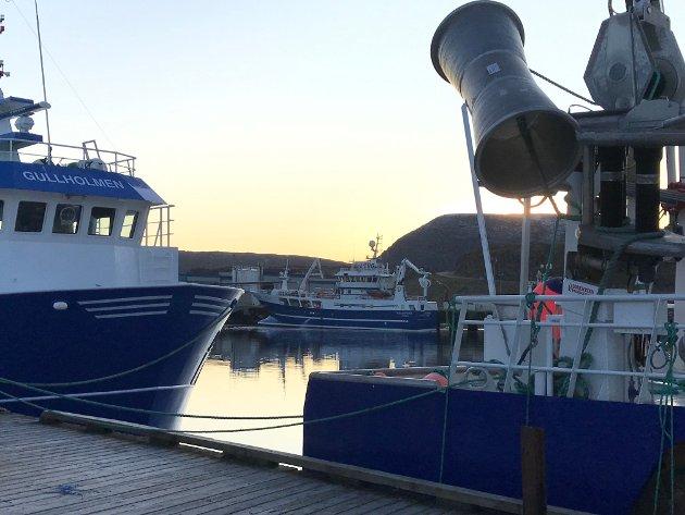 Fiskerihavnene har stor betydning for kystkommunene, mener innleggsforfatter.