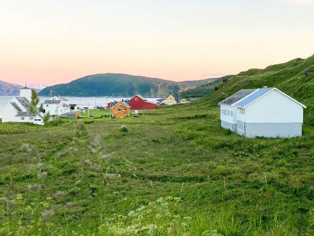 GRØNT OG FINT: Loppa øy er en veldig vakker øy på sommerhalvåret.