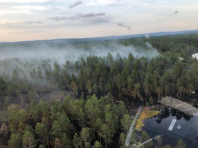 Stor brann: 15-20 dekar skog brant opp på Nordre Mangen.