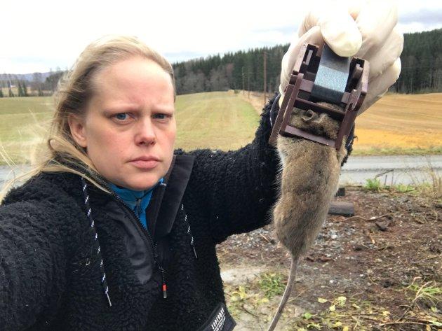 Mus på mus: Nyhetsleder Anita Jacobsen i Indre Akershus Blad er lei av å være på musejakt.