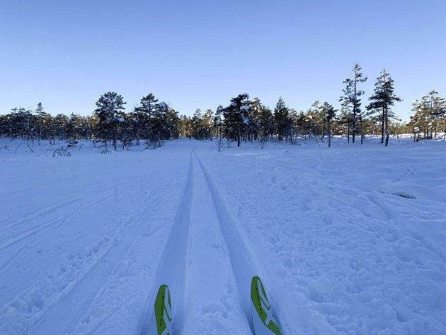 ALENE: Sikreste måte å ikke bli koronasmittet på er blant annet å gå på ski alene.