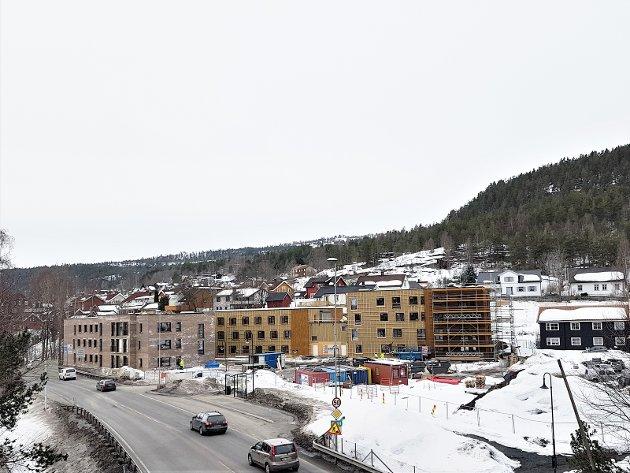 Hasbergtjerndalen/Haspa mars 2019
