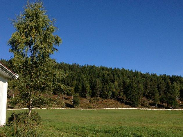 Gårdsidyll i Flesberg.