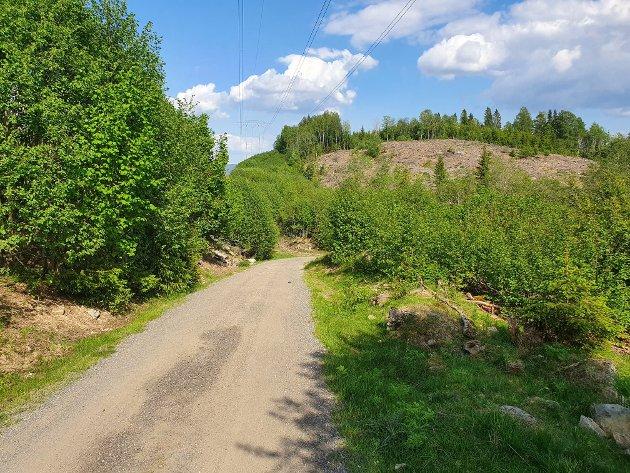 Starten: Rett rundt svingen ligger Veslevannsbommen. Cirka 400 høydemeter og fem kilometer venter før vi er på Knausen.
