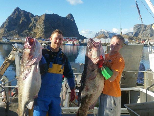 """Tommy og Lars Martin med to av de fire kaffetorskene som skipper Kent Bensvik og resten av mannskapet på """"Værøybuen"""" leverte til Astrup Lofoten AS. De veide 38,45, 33,10, 30,5  og 31 kilo."""