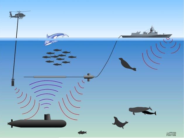 Forsvarets fregatter bruker sonarer som laget høy lyd og FFI og HI har forsket på hvordan denne lyden kan påvirke fisk og sjøpattedyr. Illustrasjon: FFI