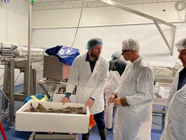 Fiskeri- og sjømatminister Odd Emil Ingebrigtsen på besøk hos bedriften Gamvik Seafood i juli i år.