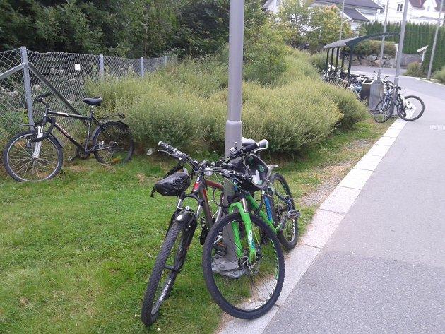 ØNSKE: Skribenten bak dette innlegget ønsker seg flere sykkelstativer på Ljabru trikkeholdeplass. Foto: Privat