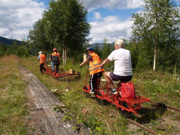 STILLE: De siste årene har dresin vært framkomstmiddelet på Valdresbanen.