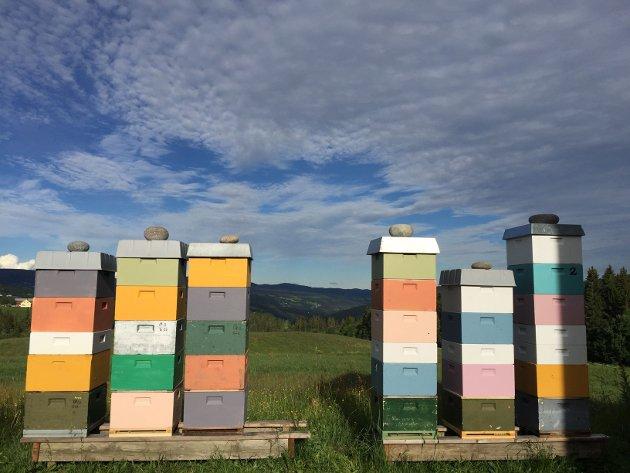 BYGGING: Bildet gir assosiasjoner til næringsvennlig hyttebygging, tenker Olaf Henke.