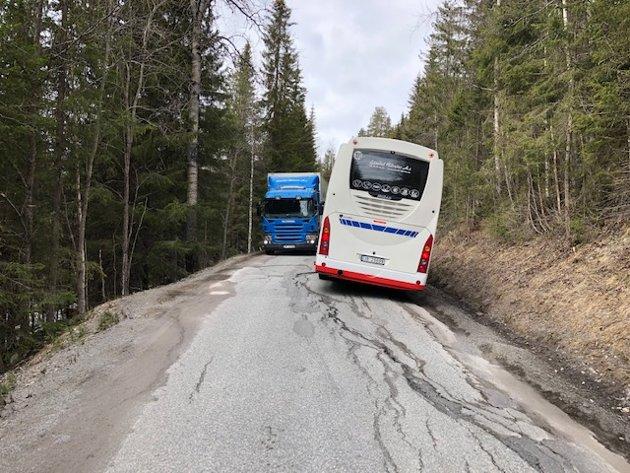 VEI: – Steinsetbygdvegen og Venstrevegen er skandaløst dårlige og er en fare for trafikanter, mener Frp i Etnedal.