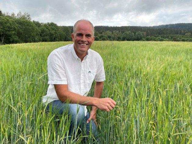 JORDBRUK: – Hver enkelt bonde må ta ansvar for egne valg, men bønder kan ikke trylle, og kan ikke gjøre jordbruk i Norge lønnsomt uten støtte i en eller annen form., skriver Hans Olav Sundfør (H).