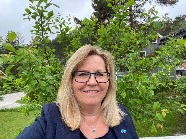 Anne Kristine Linnestad, Stortingsrepresentant, Høyre