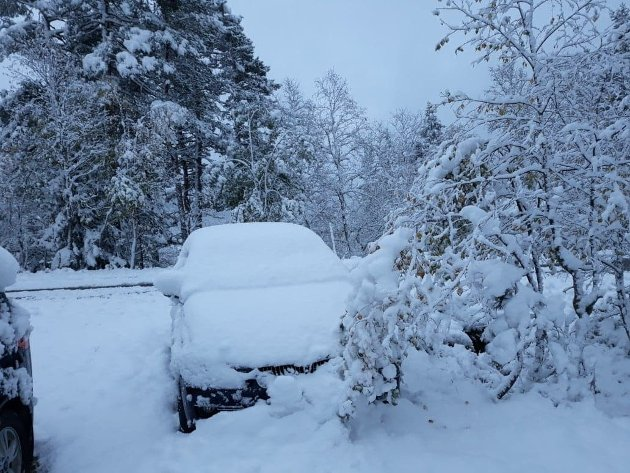 Nina har målt 25 cm snø.
