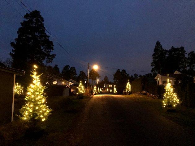 I Barnålveien er det julestemning hvert år.