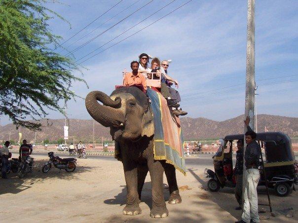 I India red jeg og noen engelske turister på en elefant. den hadde ruten sin langs en motorvei.