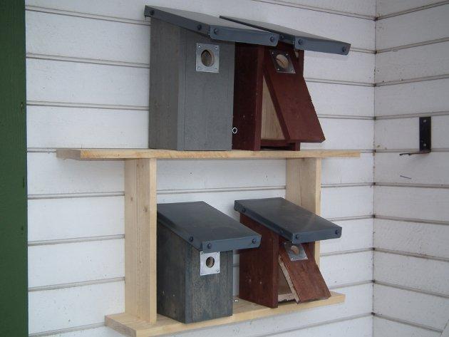 Innskriverne av dette leserbrevet kommer her med en oppskrift på hvordan man bygger fuglekasser.