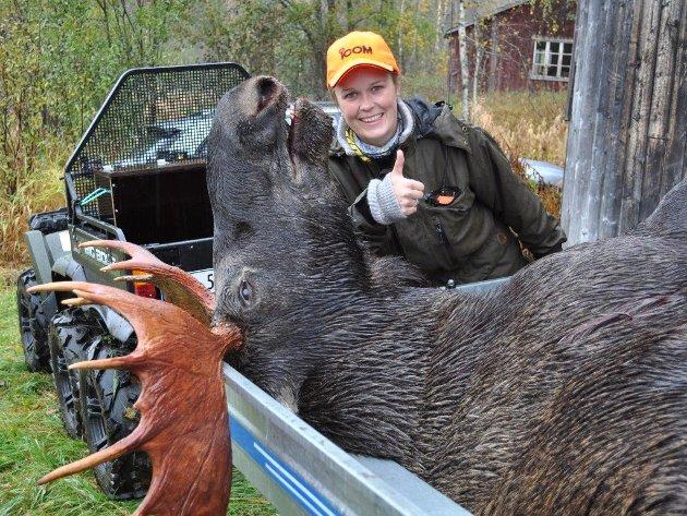 Oktober 2014: Marion Aanes Larsen  (23) skjøt sin første elg på Bjyllaneset. En 17 spirs elgokse gir god inspirasjon til videre elgjakt.