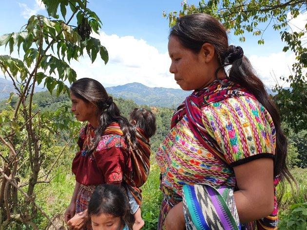 Mayakvinner og småbrukere i Guatemala