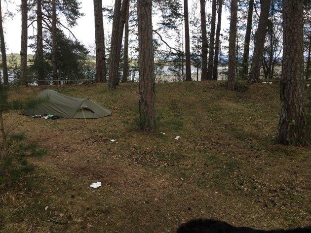 Ikke så trivelig: Søppel, dritt og dopapir og hogging av og i trær skjemmer Skurven. Denne våren har mange ligget i telt og hengekøyer på Skurven.