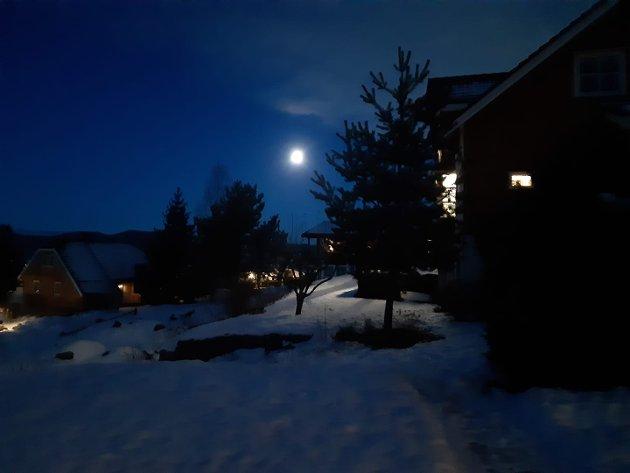 MOELV: 20 blå i Ekreskogen i Moelv, melder Gunn Elisabeth Hauge-Nilsen rett etter klokken 08.00 fredag.