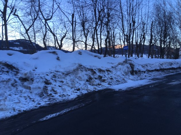 Bussholdeplassen: Kanskje dunkende dukker opp når snøen smelter.