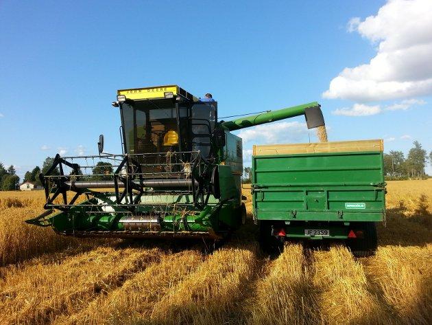 Innhøsting