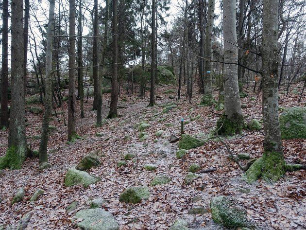 RØDSÅSEN: La det bestå som det flotte rekreasjonsområde det er i dag, skriver Jørn Myhre. Foto: Privat