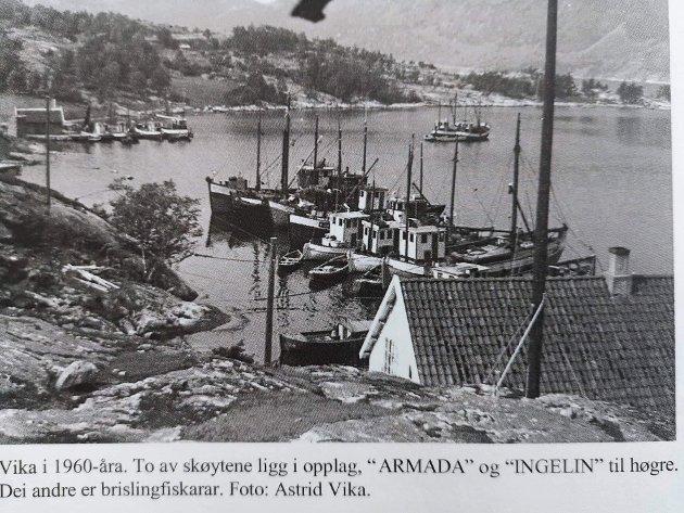 FISKE: Tidlegare var det mange som dreiv med brislingfiske frå Vika i Lysefjorden.