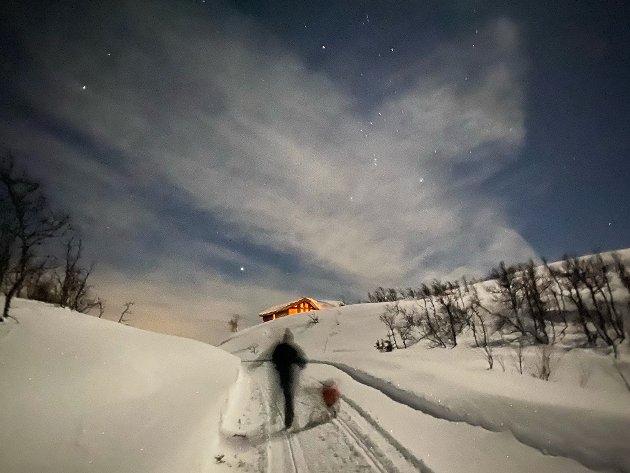 Bildet ble tatt seint en kveld i Tuddal under stjernehimmelen. Det er en ro og nesten trollsk stemning over bildet. som juryen falt for. Fotografen vinner et gavekort på 1000 kroner på Sport1.