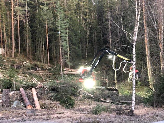 FIKS FERDIG: Høyre har etterlyst ferdig opparbeidede tomter, men uten at noe har skjedd. Bildet er hentet fra arbeidet Thor H. Jacobsen og Sveinung Torsdal har satt i gang i Leivstein på eget initiativ.