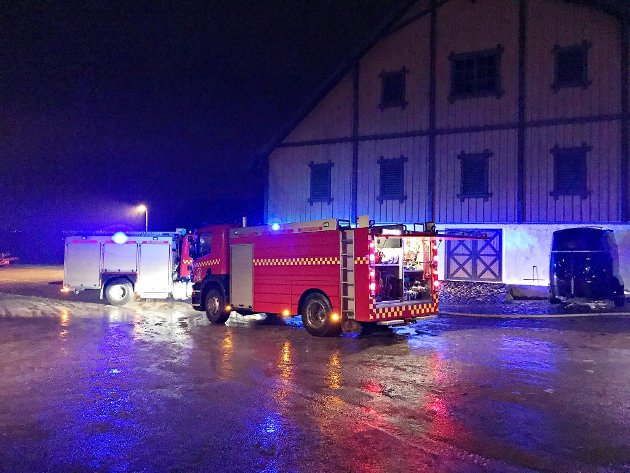 Vestfold interkommunale brannvesen (VIB) slukket brannen med bistand fra stamhusbesitter.