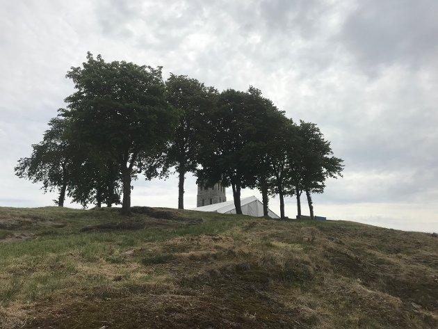 I DAG: Slottsfjellet slik det nå tar seg ut fra nordsiden, med tårnet langt på vei skjult av trærne.